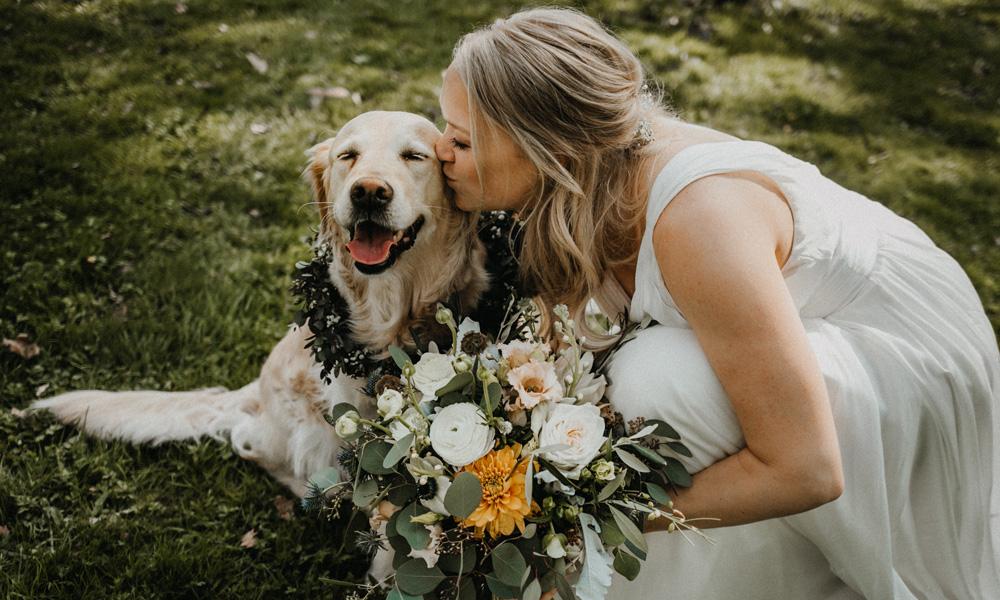 Hund mit Blumenkranz und Braut